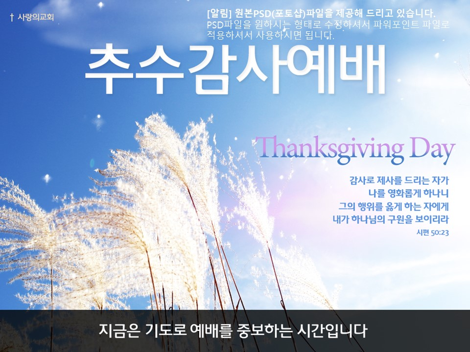 thanksgiving3_main